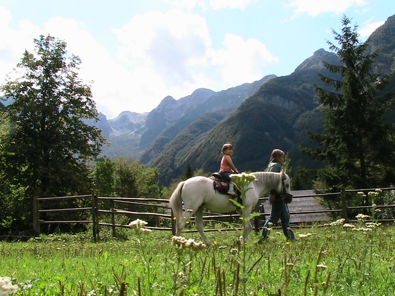 Horse Riding Activity Holiday image